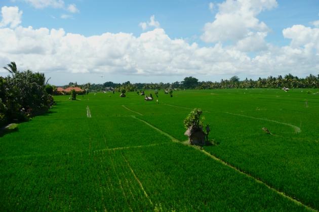 2008-101-Bali-125