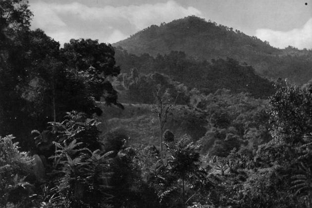 Introducing Malaya and Borneo (02)