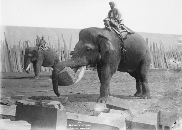 Courtesy UK National Archives