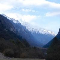 How to organise independent treks in Langtang National Park