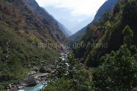 Langtang trail 01