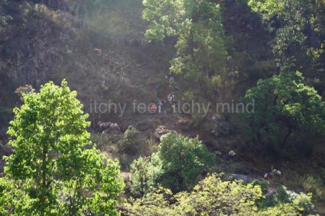 Langtang trail 11