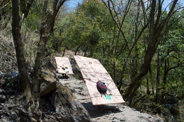 Langtang trail 12