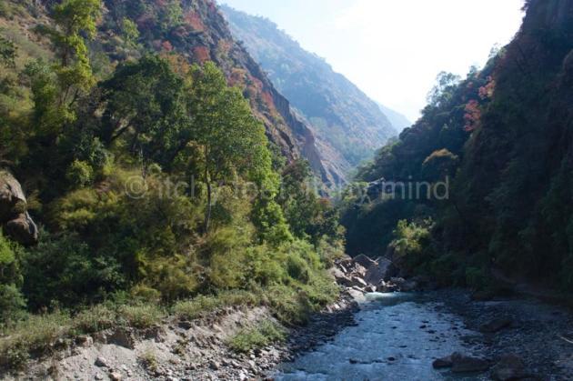 Langtang trail 13