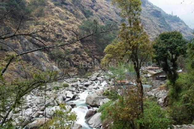 Langtang trail 16