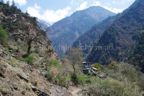 Langtang trail 19