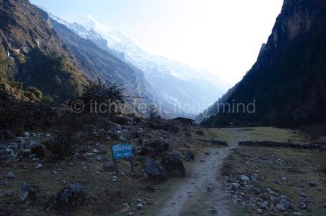 Langtang trail 28