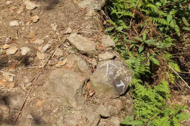 Langtang trail 42