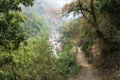 Langtang trail 50