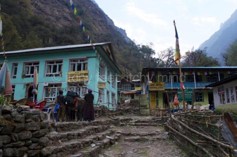 Langtang trail 53