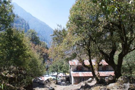 Langtang trail 55
