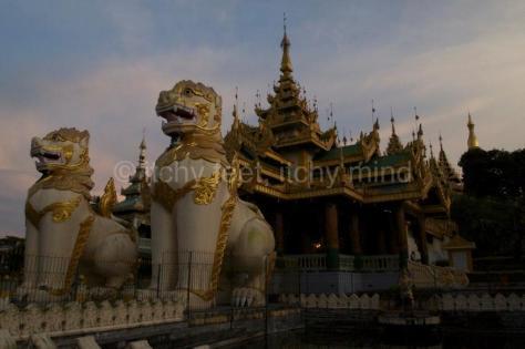 Shwedagon Pagoda-101