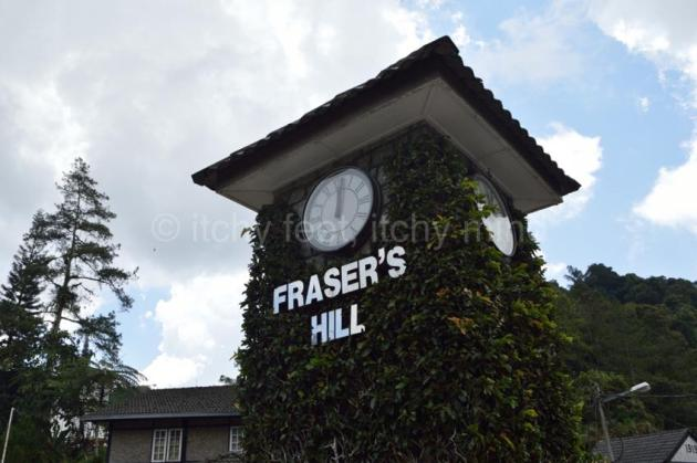 Fraser 03